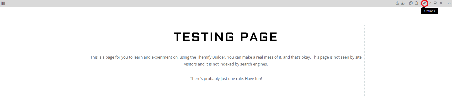 Themify Builder, Testing Page