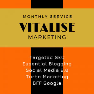 Vitalise Marketing, SEO WEB Designs