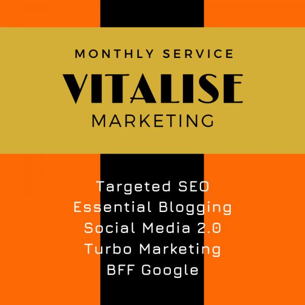 Vitalise Marketing, SEO WEB Designs